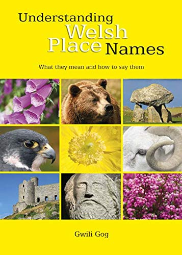 9780955355745: Understanding Welsh Place Names: What They Mean and How to Say Them