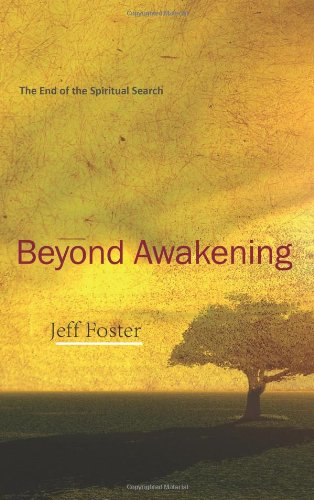 9780955399978: Beyond Awakening: The End of the Spiritual Search