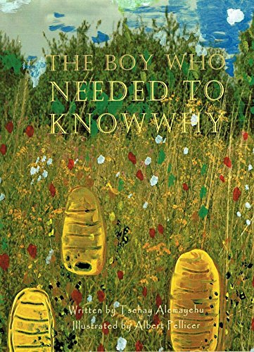 9780955434341: The Boy Who Needed to Know Why