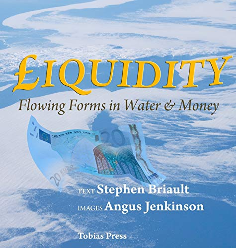9780955536236: Liquidity: Flowing Forms in Water and Money