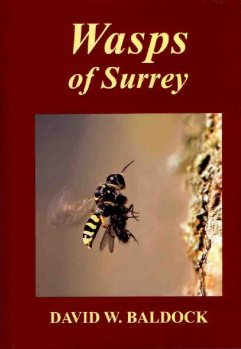 9780955618826: Wasps of Surrey (The Surrey Wildlife Atlas Project)