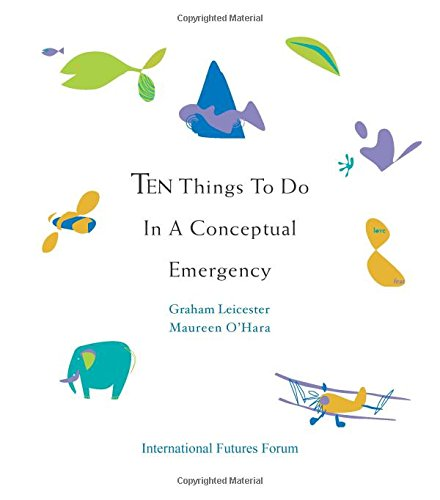 9780955768163: Ten Things to do in a Conceptual Emergency