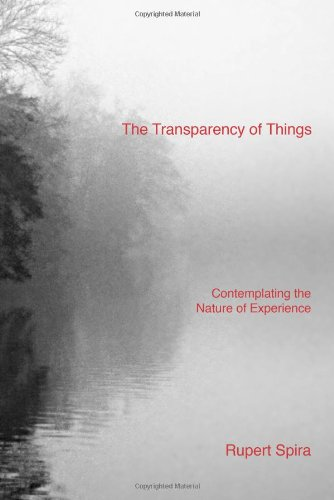 9780955829055: The Transparency of Things: Contemplating the Nature of Experience