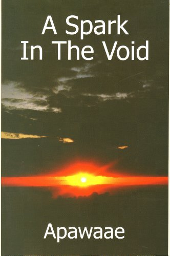 9780955873706: A Spark in the Void
