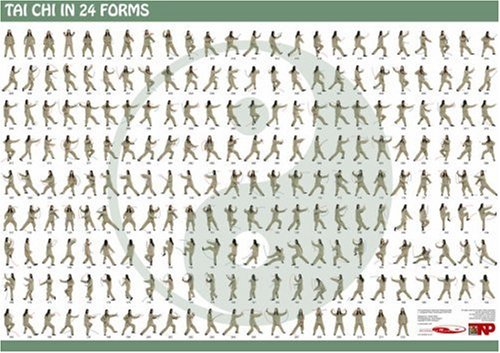 9780955896903: Tai Chi in 24 Forms