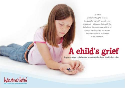 9780955953903: A Child's Grief: Supporting a Child When Someone in Their Family Has Died