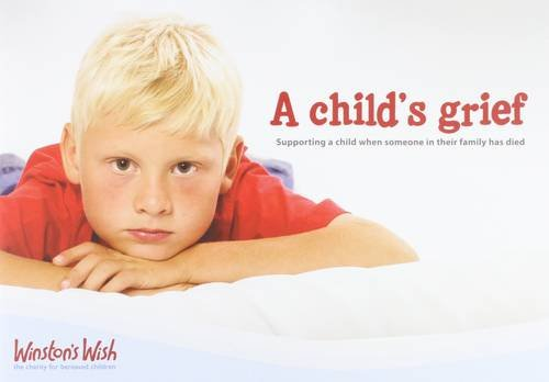 9780955953934: A Child's Grief: Supporting a Child When Someone in Their Family Has Died