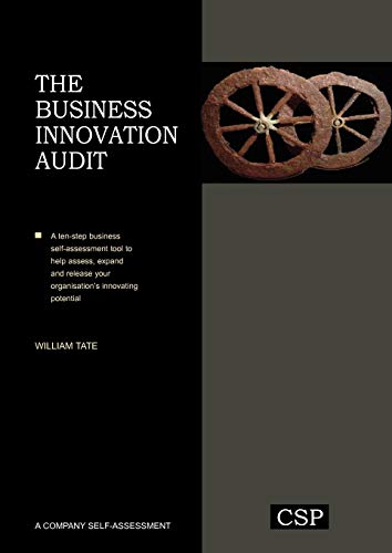 9780955970733: The Business Innovation Audit