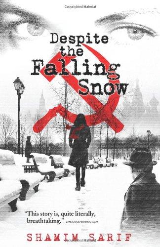 9780956031624: Despite The Falling Snow