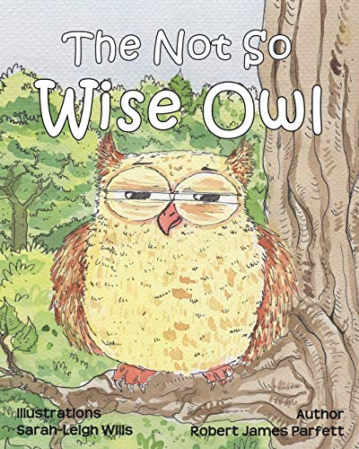 9780956033161: The Not So Wise Owl