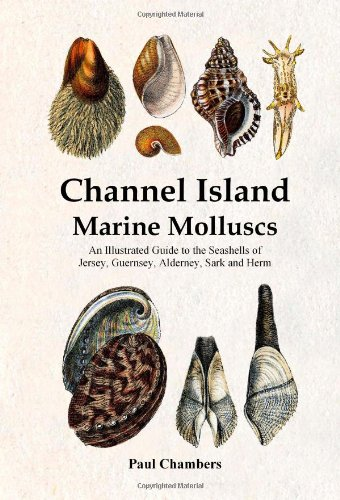 Channel Island Marine Molluscs: An Illustrated Guide: Chambers, Paul Martin