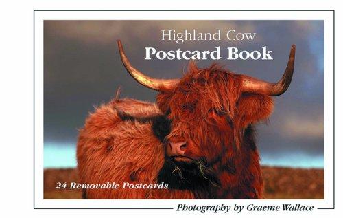 Highland Cow Postcard Book: Wallace, Graeme