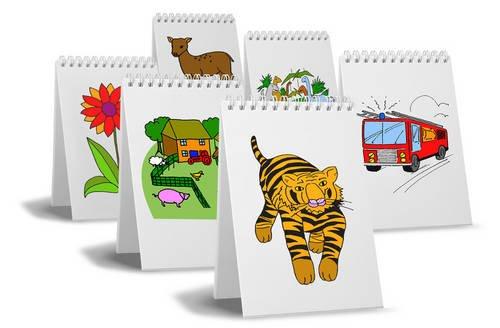 9780956201256: NDP3 Assessment Flip-Books Colour