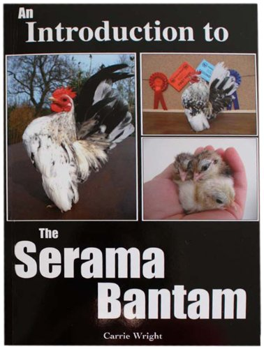 9780956225504: An Introduction to the Serama Bantam