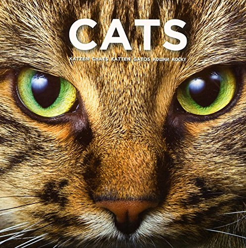 Cat Coffee Table Book: This Book Celebrates: Procter and Gamble