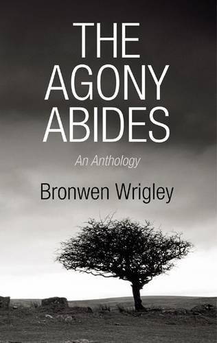 9780956277206: The Agony Abides: An Anthology