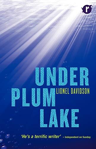 9780956368997: Under Plum Lake