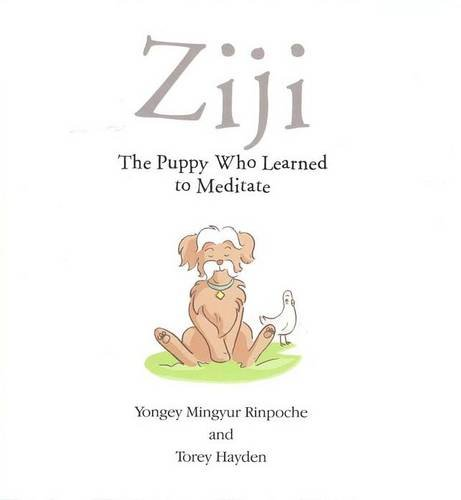 Ziji: The Puppy Who Learned to Meditate (095638580X) by Rinpoche Yongey Mingyur; Torey Hayden