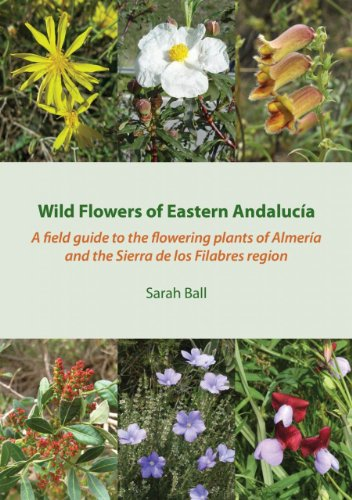 9780956396112: Wild Flowers of Eastern Andalucia: A Field Guide to the Flowering Plants of Almeria and the Sierra De Los Filabres Region