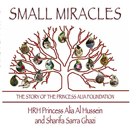 9780956417084: Small Miracles: The Story of the Princess Alia Foundation