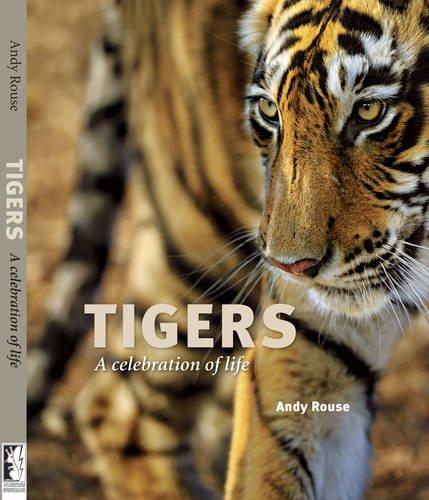 9780956457509: Tigers: A Celebration of Life