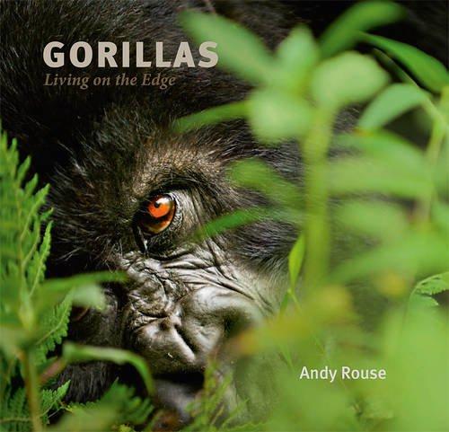 9780956457516: Gorillas: Living on the Edge