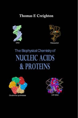 9780956478115: The Biophysical Chemistry of Nucleic Acids and Proteins