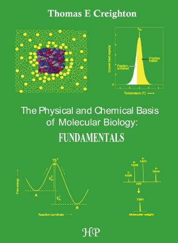 9780956478139: The Physical and Chemical Basis of Molecular Biology: Fundamentals
