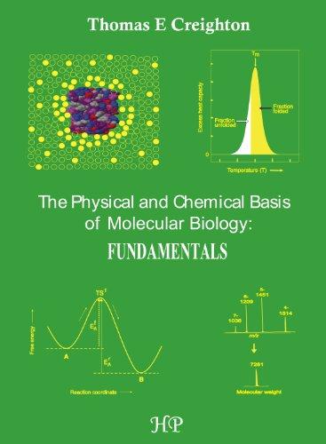 9780956478139: The Physical and Chemical Basis of Molecular Biology: Fundamentals