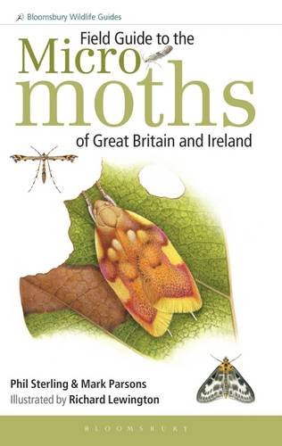 Field Guide to the Micro-Moths of Great: Phil Sterling