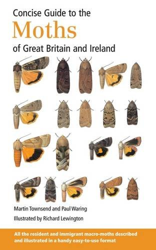 9780956490292: Concise Guide to the Moths of Great Britain and Ireland
