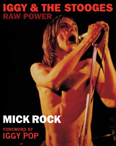 9780956494214: Iggy & the Stooges: Raw Power