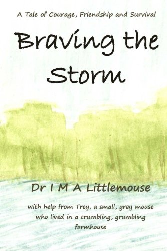 9780956570024: Braving the Storm: A Tale of Courage, Friendship and Survival
