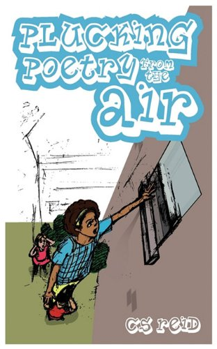 9780956578624: Plucking Poetry from the Air