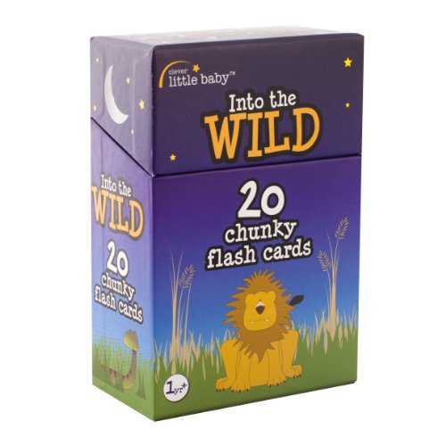 9780956699909: Flash Cards: Set 1: Into the Wild