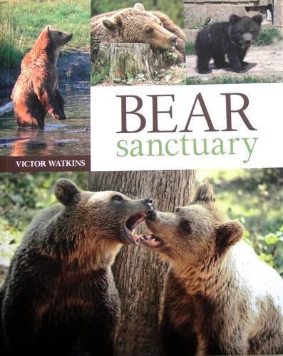 9780956778505: Bear Sanctuary