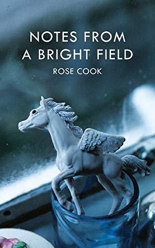 Notes from a Bright Field: Rose Cook