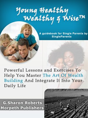 9780956898807: Young, Healthy, Wealthy and Wise: A Guidebook for Single Parents by Single Parents
