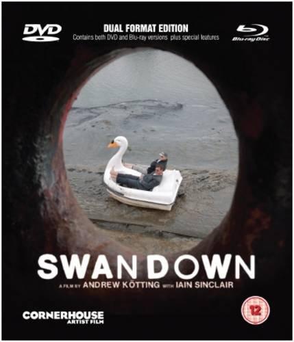 9780956957139: Swandown