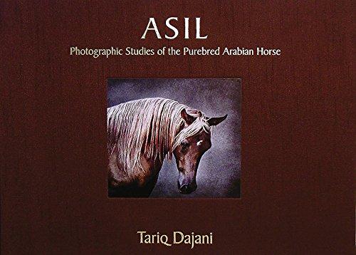 9780957023383: ASIL: Photographic Studies of the Purebred Arabian Horse