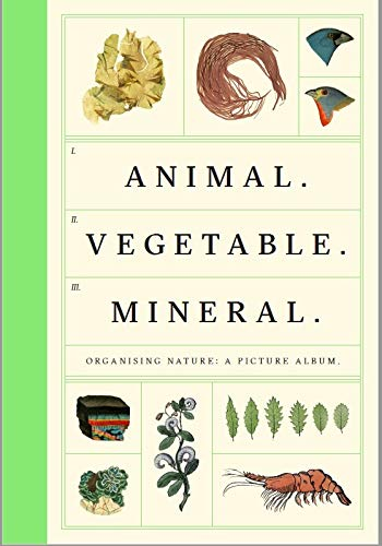 9780957028593: Animal Vegetable Mineral: Organising Nature, A Picture Album