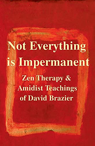 9780957158443: Not Everything Is Impermanent