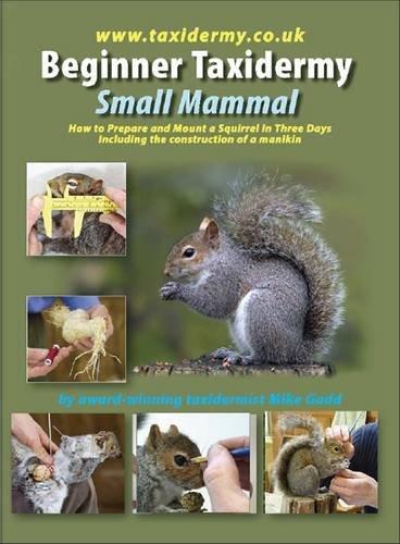 9780957190306: Beginner Taxidermy: Small Mammal