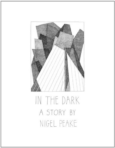 9780957213746: In the Dark - a Story by Nigel Peake