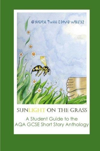 Sunlight on Grass: a Student Guide to the AQA GCSE Short Story Anthology: David Wheeler