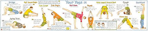 9780957343702: Your Yoga Chart: The One with the Male Yogi!