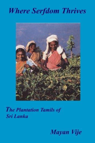 9780957502352: Where Serfdom Thrives: The Plantation Tamils of Sri Lanka