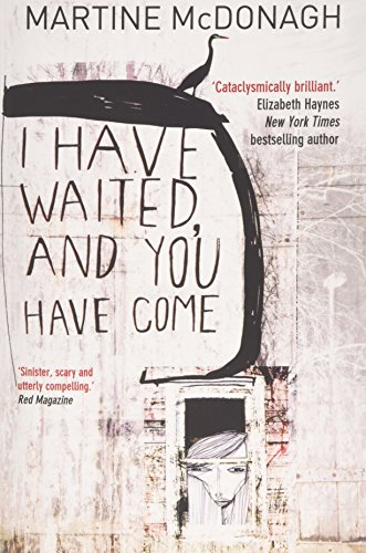 9780957503755: I Have Waited, and You Have Come: A story of obsession and survival