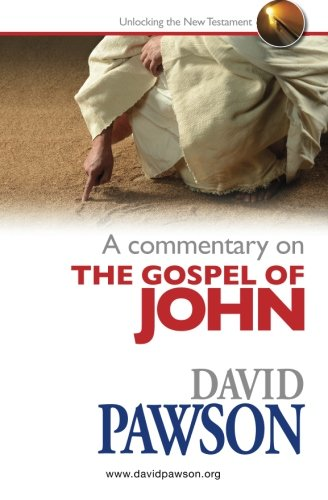 A Commentary on the Gospel of John: Pawson, Dvaid