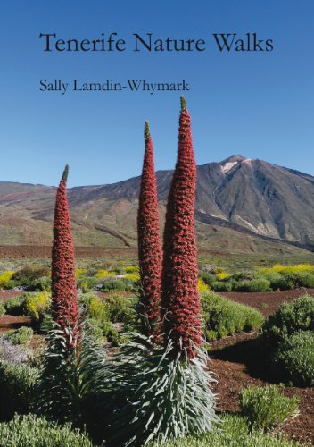 9780957548602: Tenerife Nature Walks